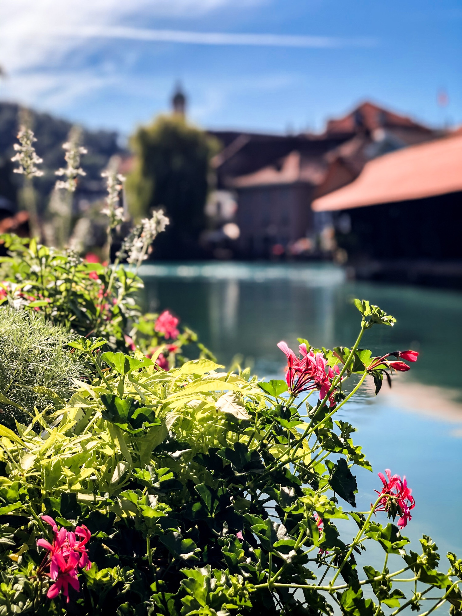 Thun Szwajcaria