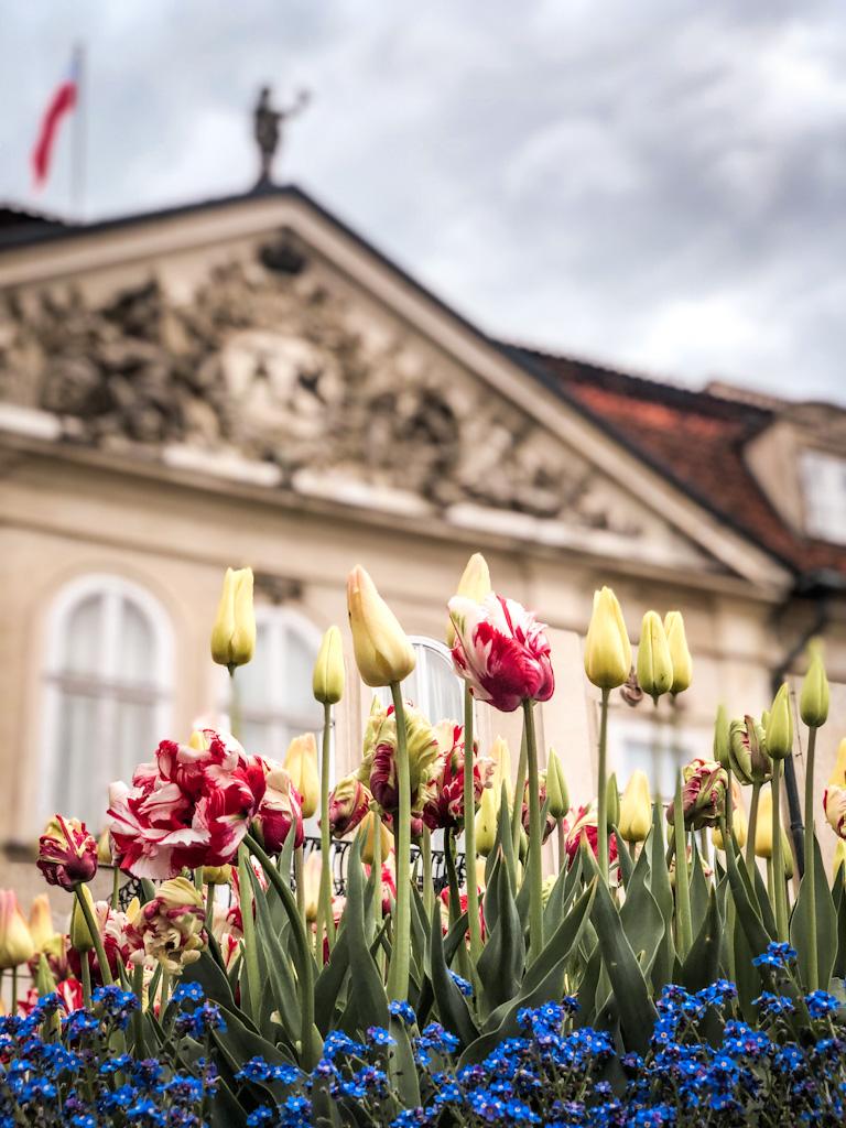 nieborów pałac zwiedzanie